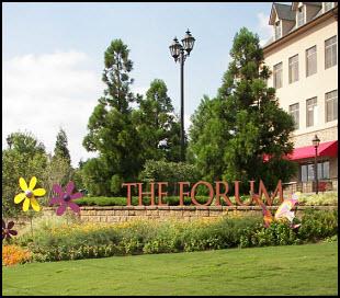 Peachtree Corners GA The Forum